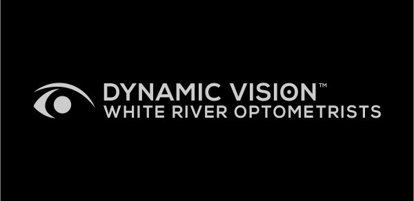 Logo for Dynamic Vision - White River